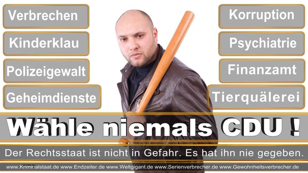 Armin-Laschet (11)