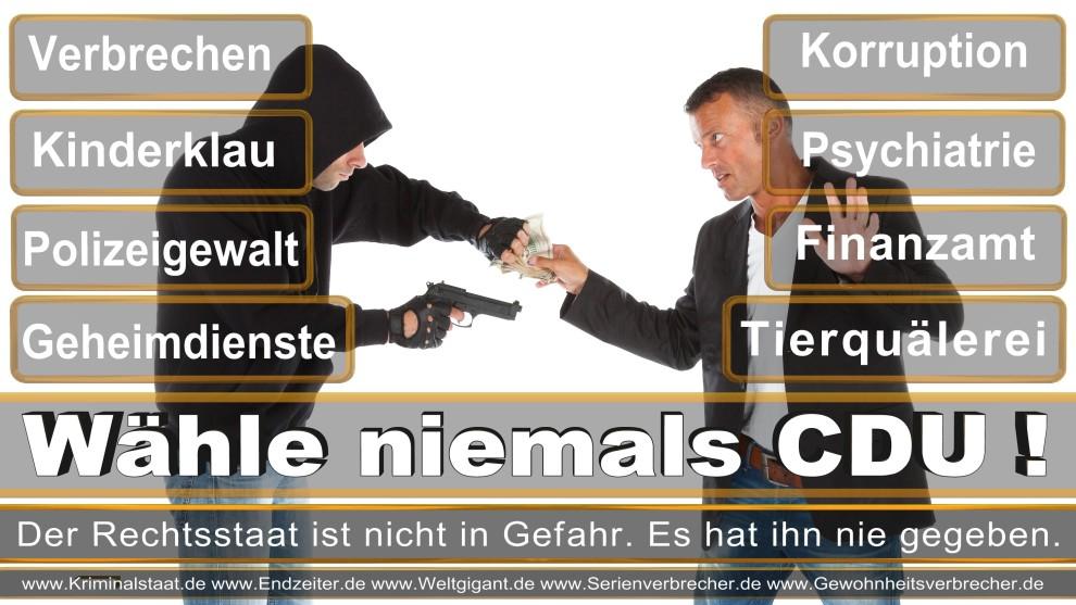 Armin-Laschet (24)