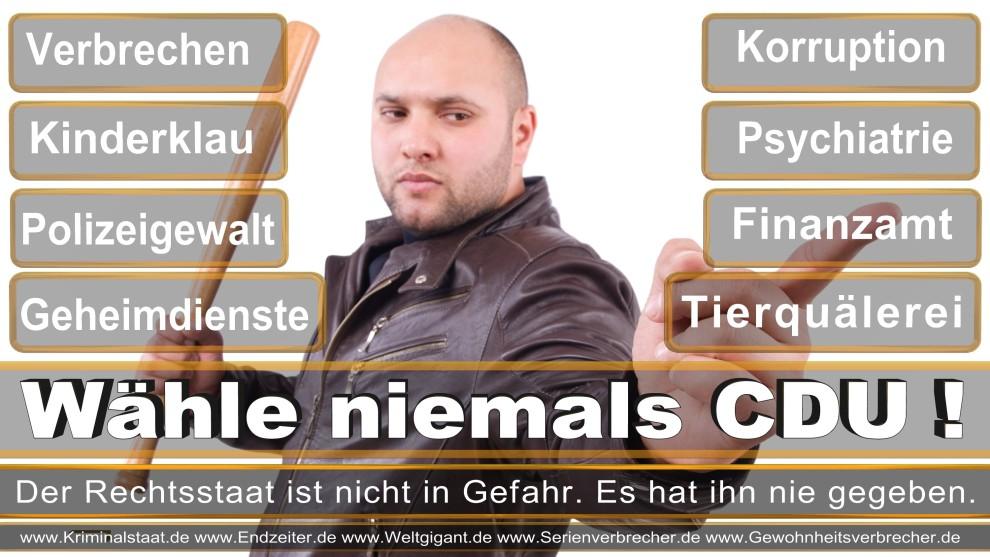 Armin-Laschet (26)