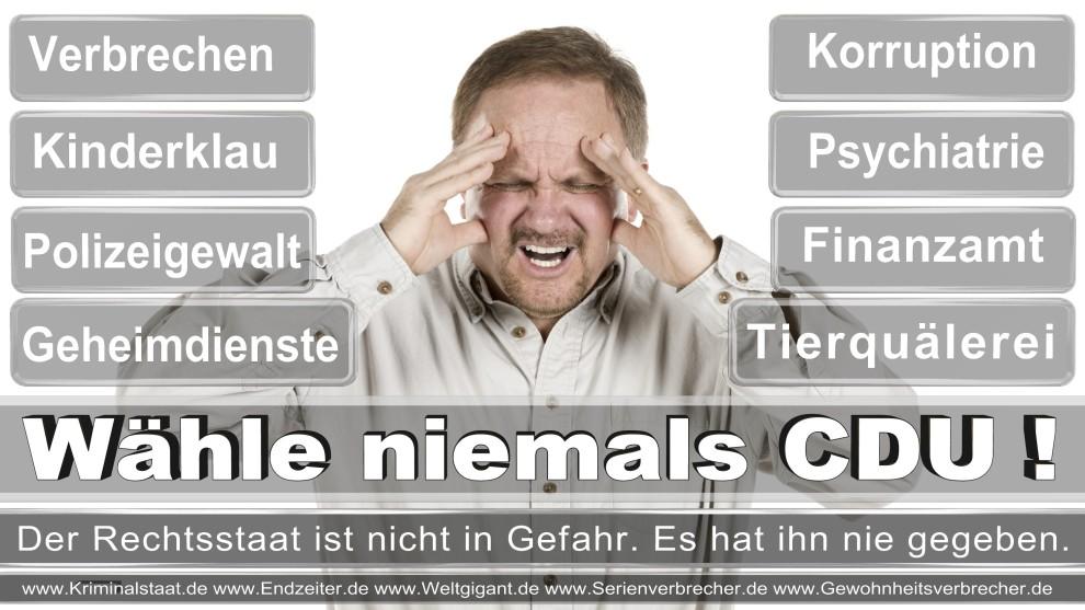 Armin-Laschet (33)