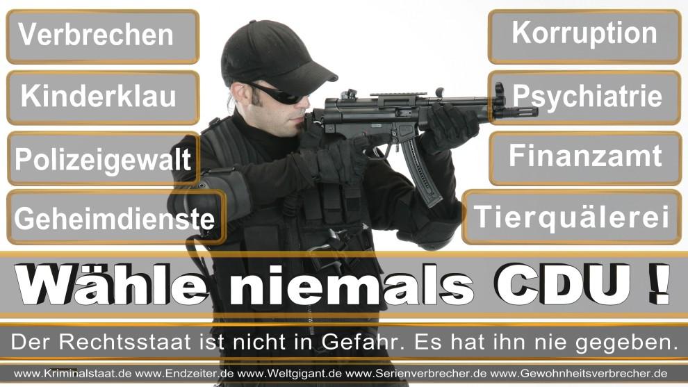 Armin-Laschet (37)