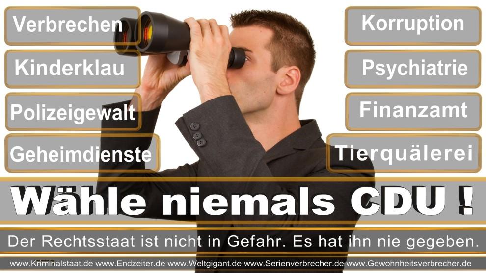 Armin-Laschet (7)