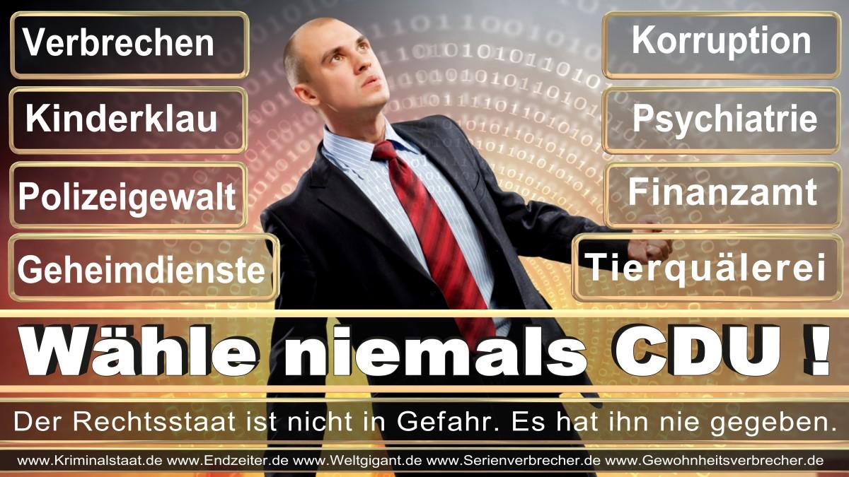 Armin_Laschet_CDU (1)