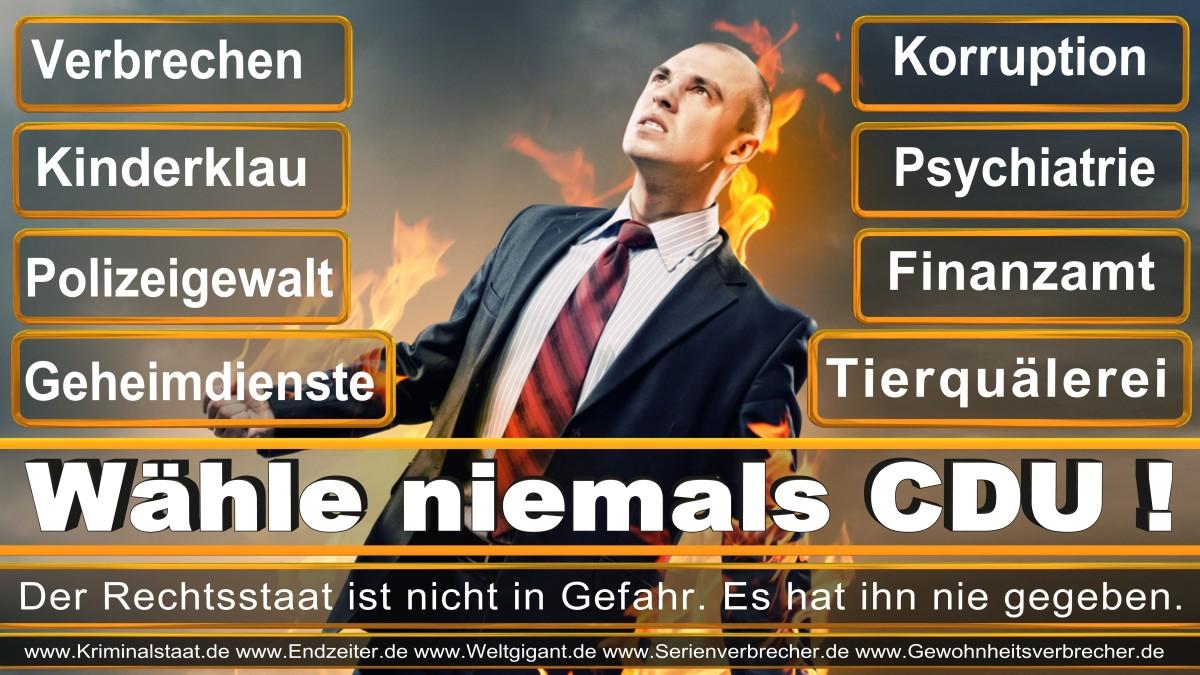 Armin_Laschet_CDU (2)