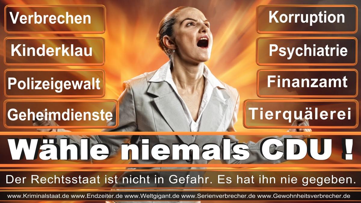 Armin_Laschet_CDU (3)
