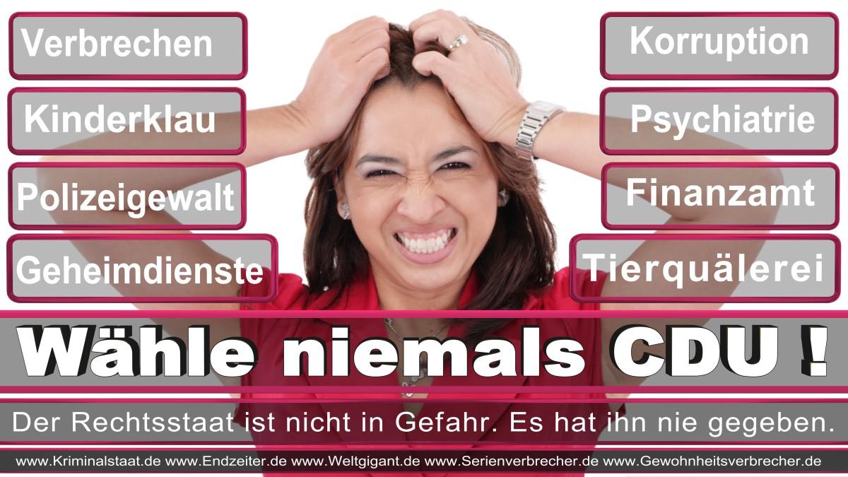 Armin_Laschet_CDU (55)