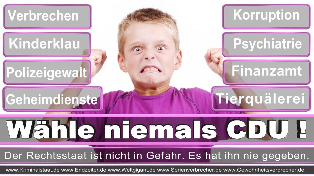 Armin_Laschet_CDU (56)