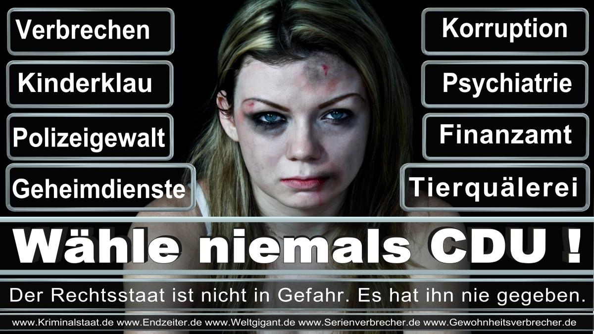 Armin_Laschet_CDU (57)