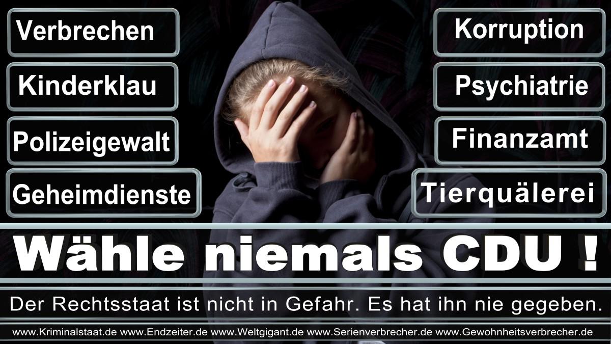 Armin_Laschet_CDU (59)
