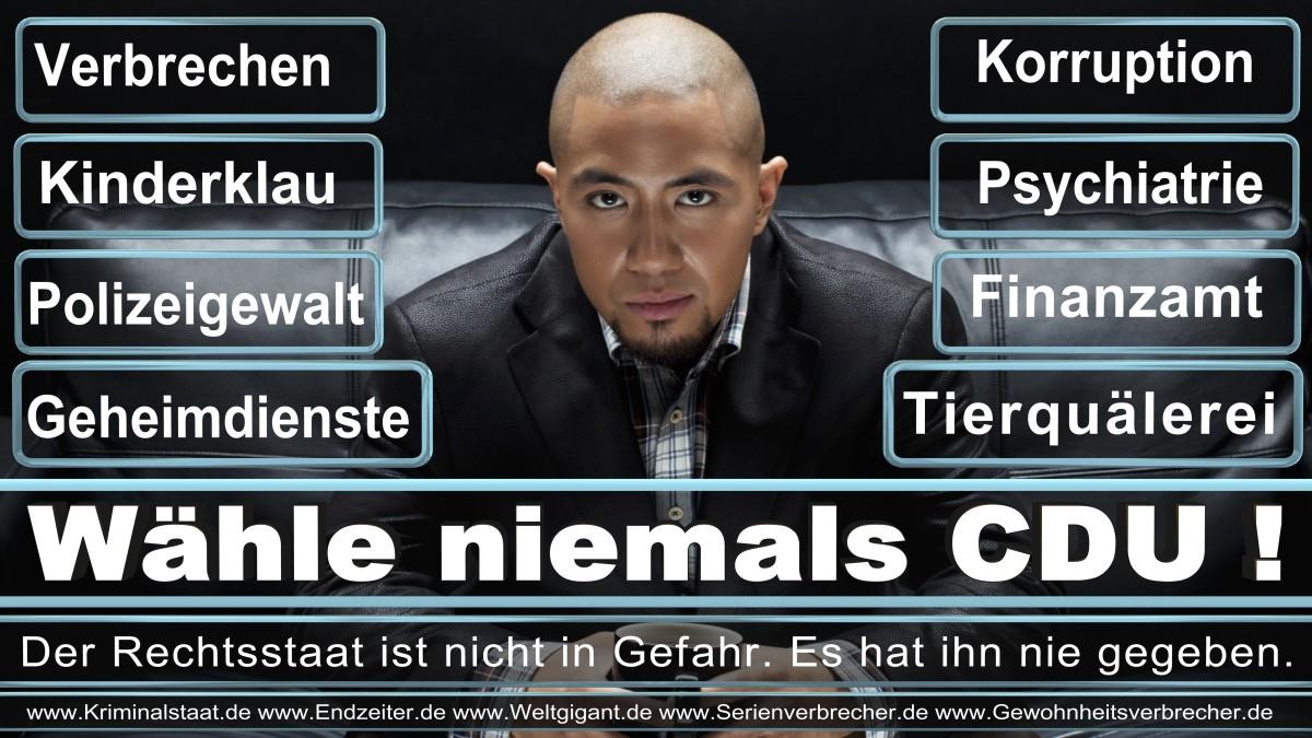 Armin_Laschet_CDU (60)