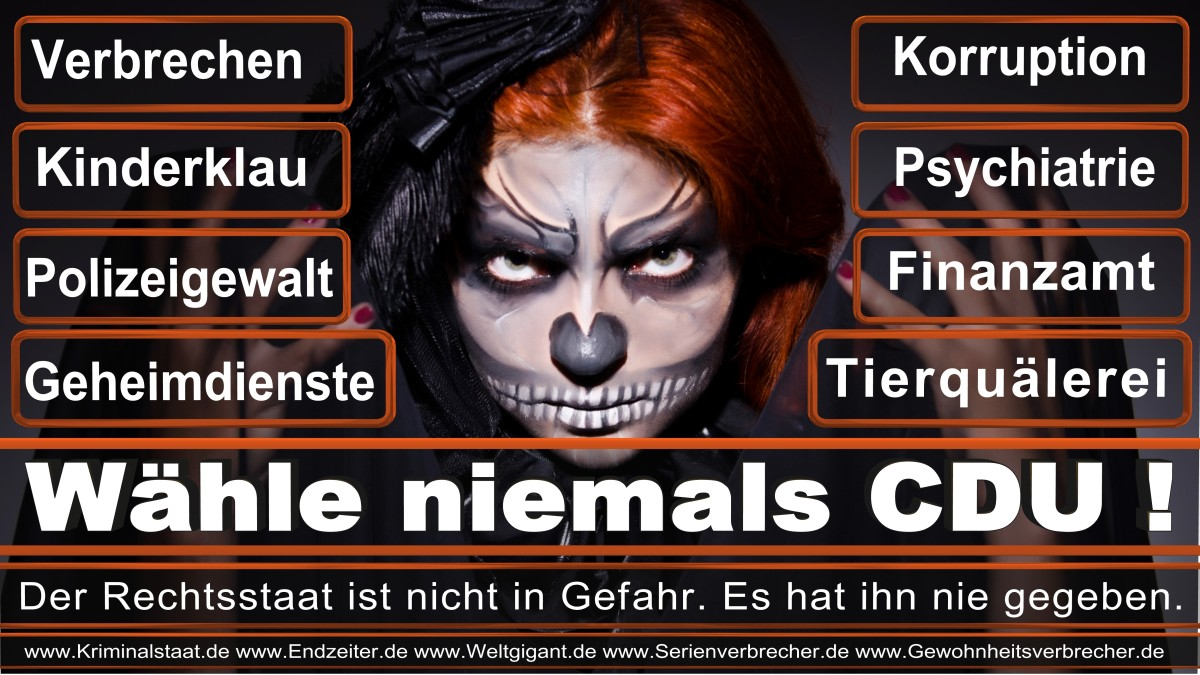 Armin_Laschet_CDU (61)