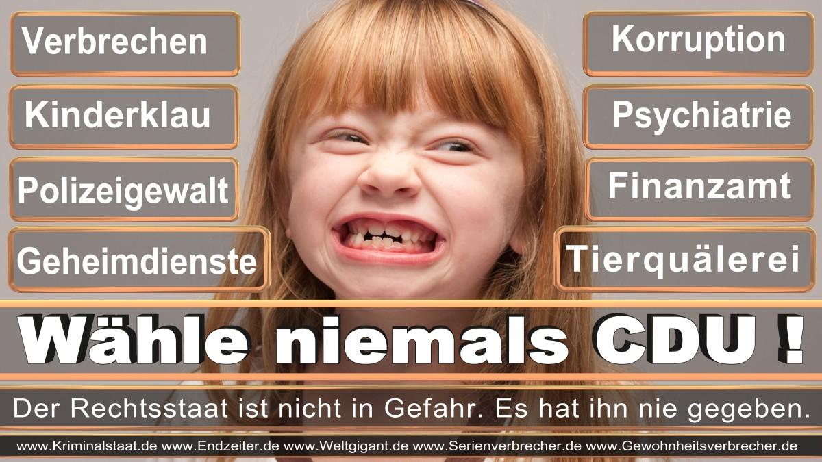 Armin_Laschet_CDU (62)