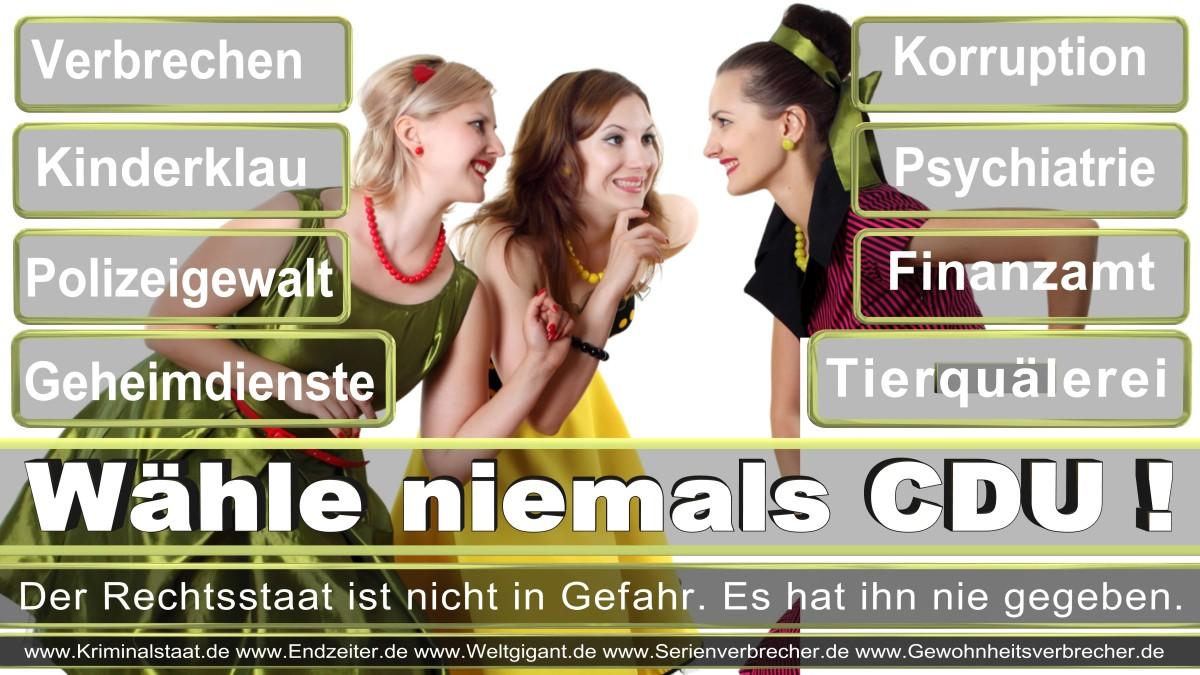 Armin_Laschet_CDU (63)