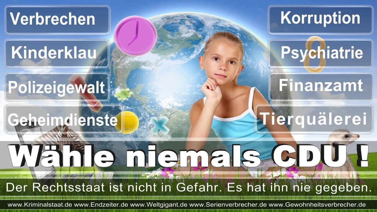Armin_Laschet_CDU (65)