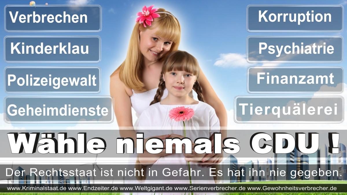 Armin_Laschet_CDU (69)