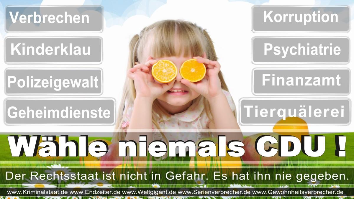 Armin_Laschet_CDU (73)
