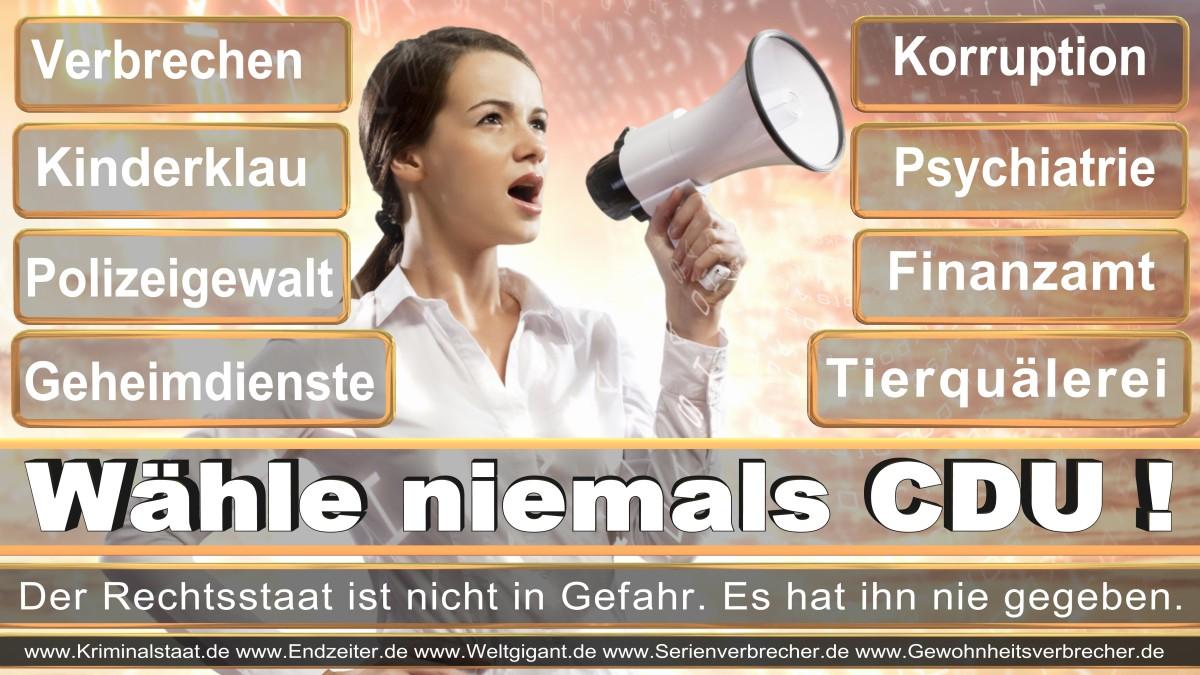 Armin_Laschet_CDU (74)