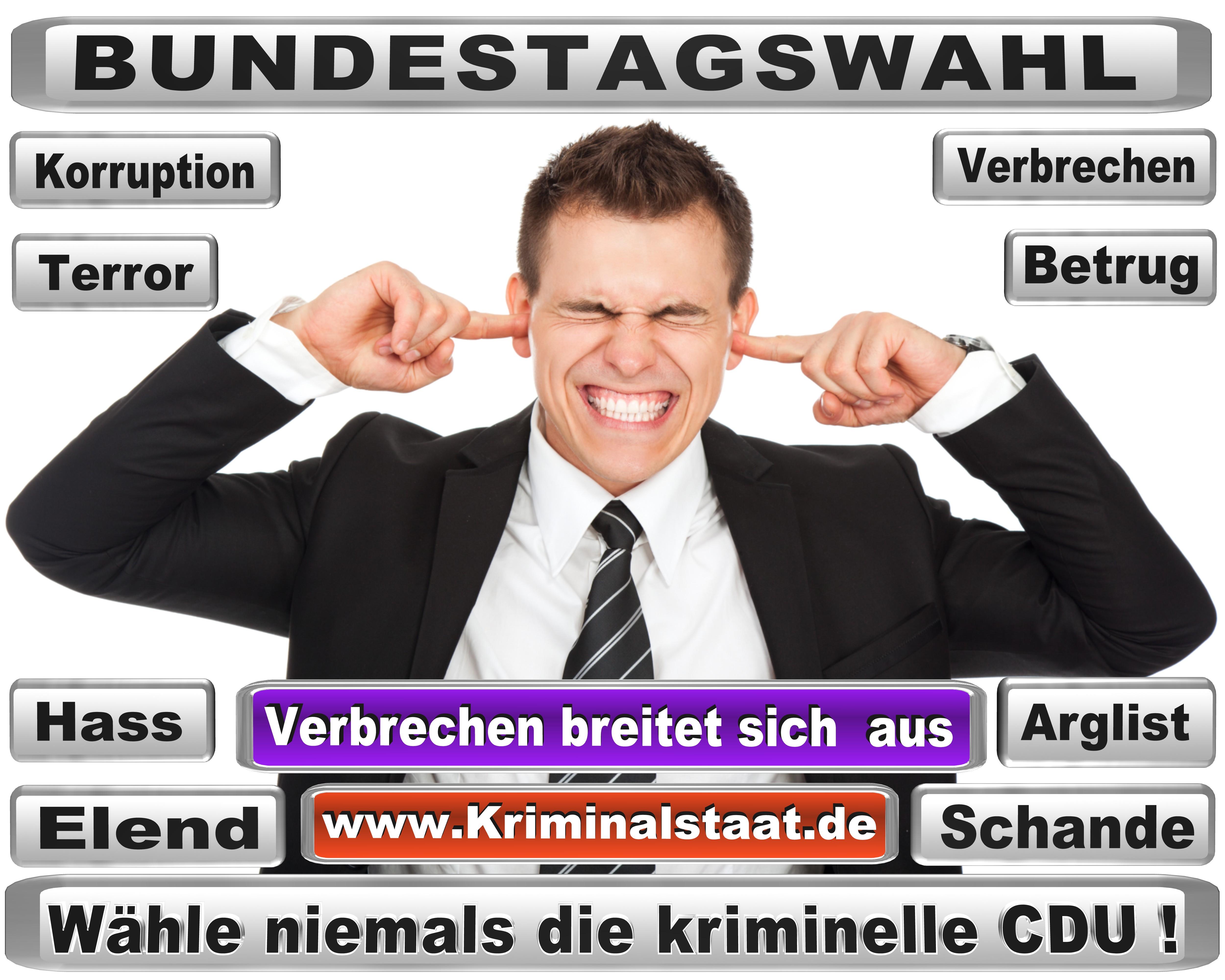 Bundestagswahl,2017,CDU (20)