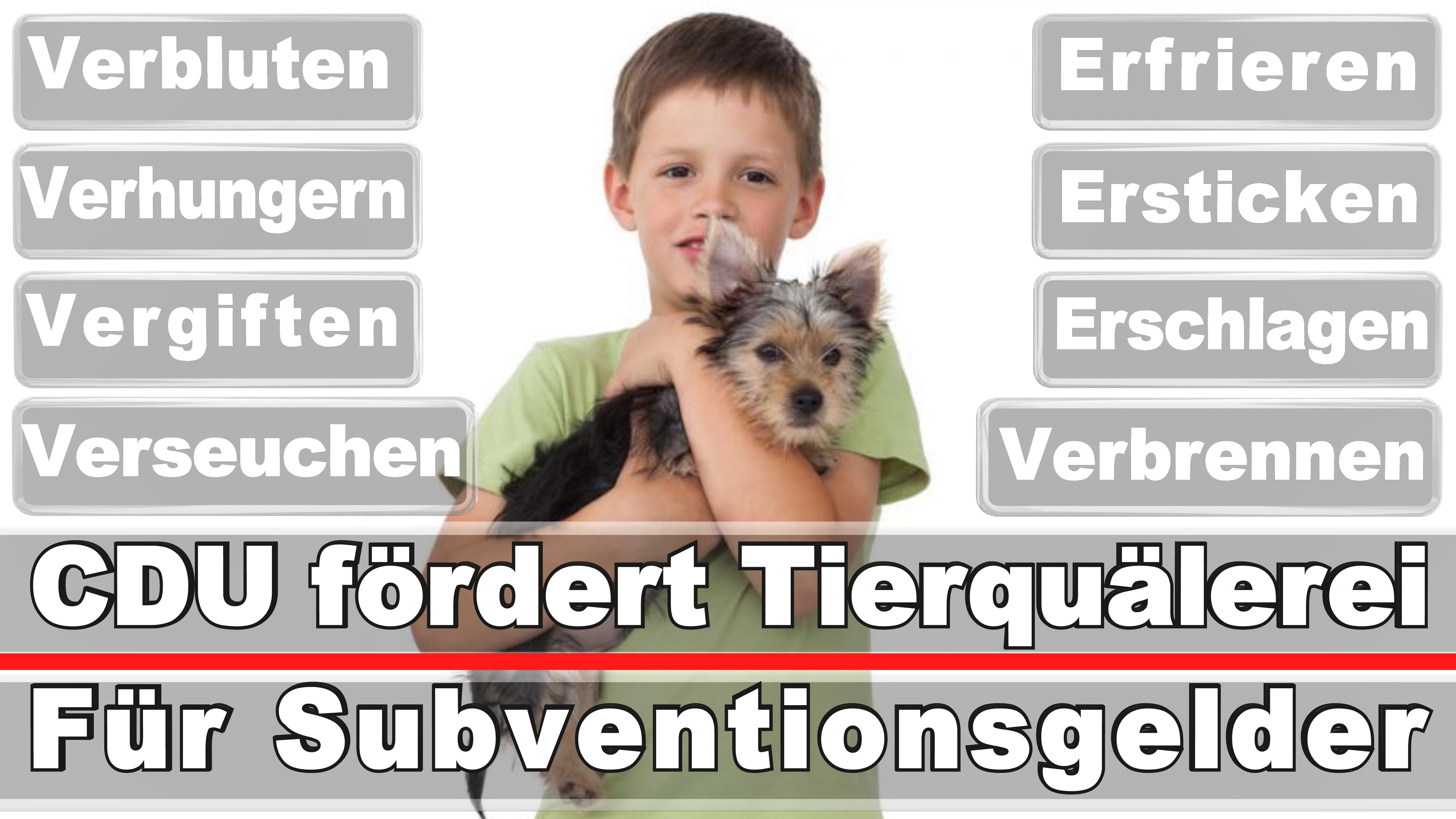 Landtagswahl-Bundestagswahl-CDU-SPD-FDP-AFD-Linke-Piraten (17)