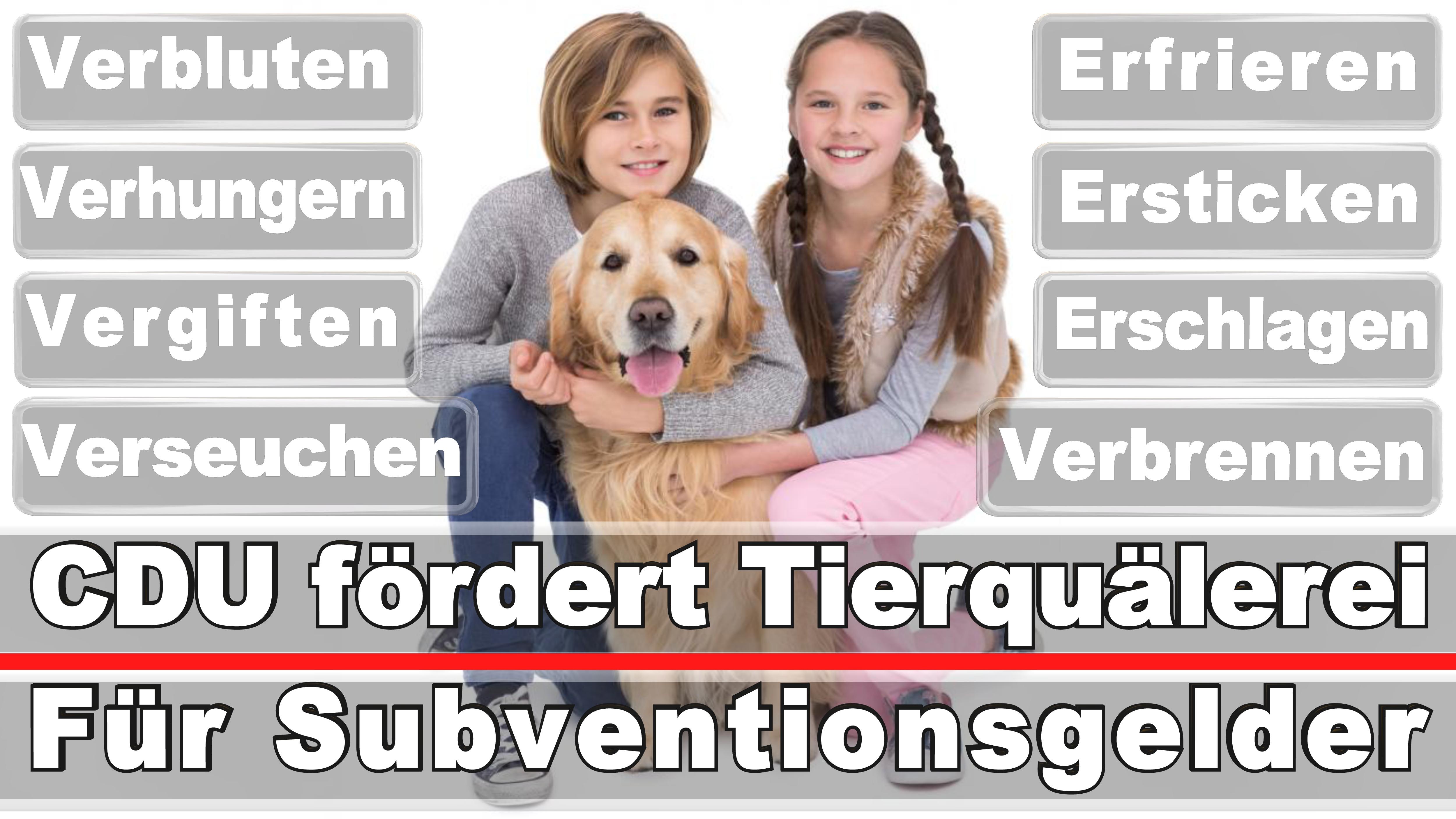 Landtagswahl-Bundestagswahl-CDU-SPD-FDP-AFD-Linke-Piraten (18)