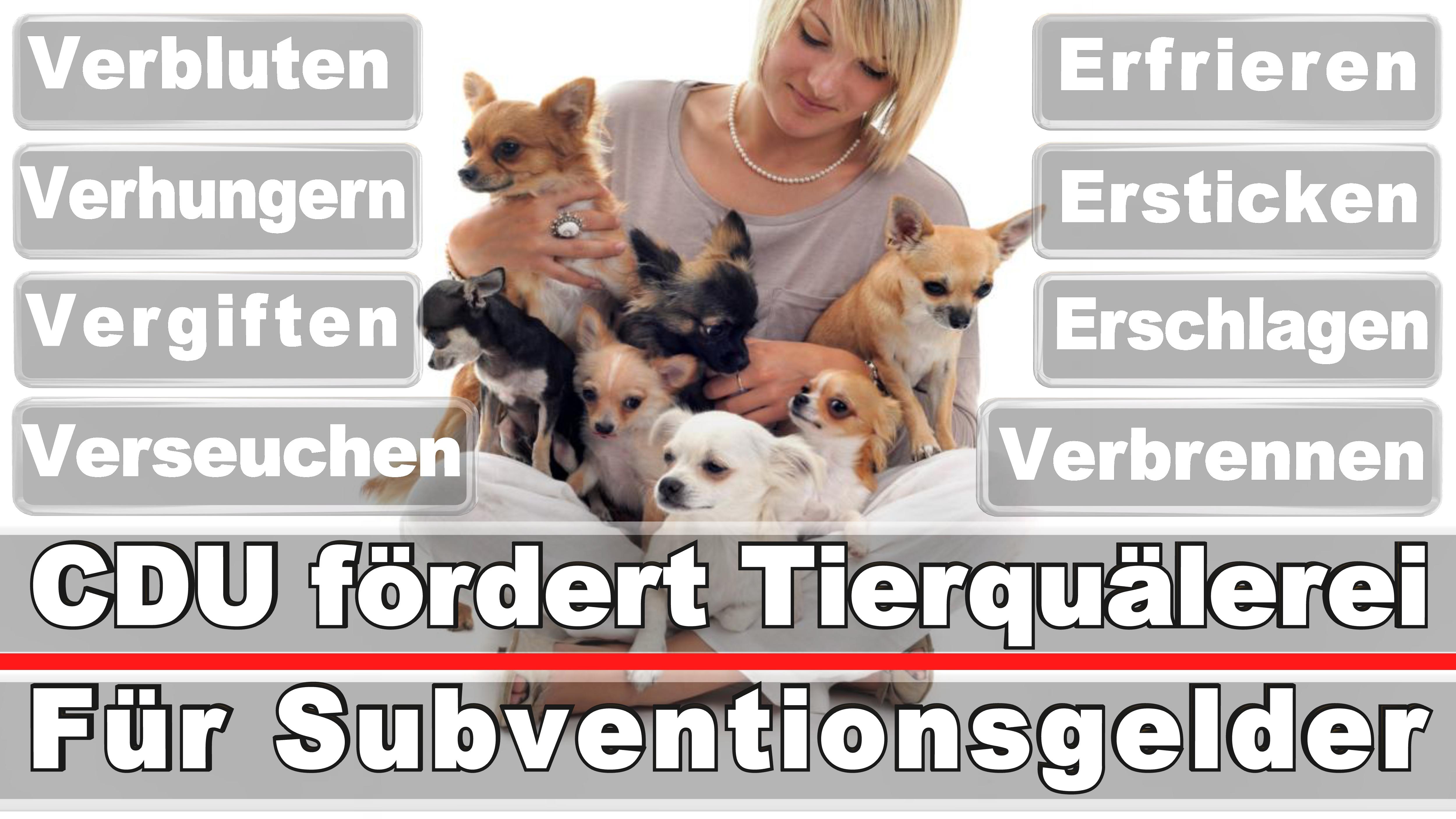 Landtagswahl-Bundestagswahl-CDU-SPD-FDP-AFD-Linke-Piraten (22)